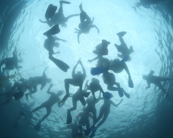 Between Two Harbors: We Are Ocean